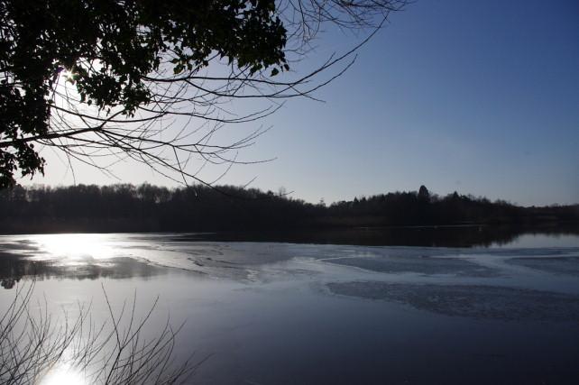 Hedgecourt Lake, Surrey